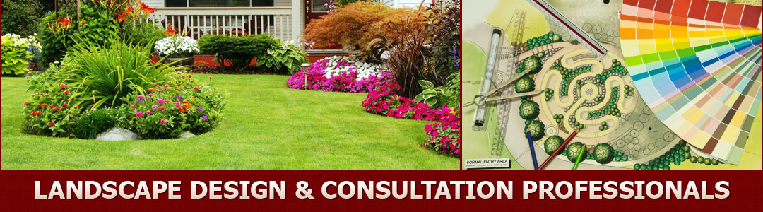 Landscaping san jose landscape design silicon valley for Landscape design san jose